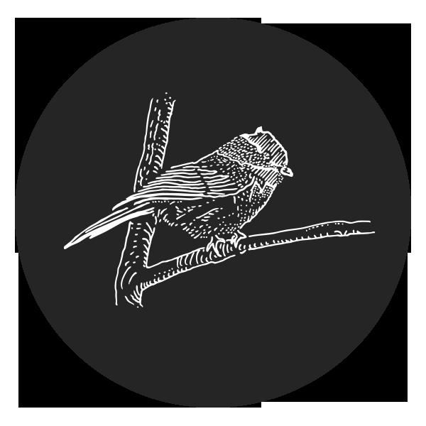 Bird Coaster Set